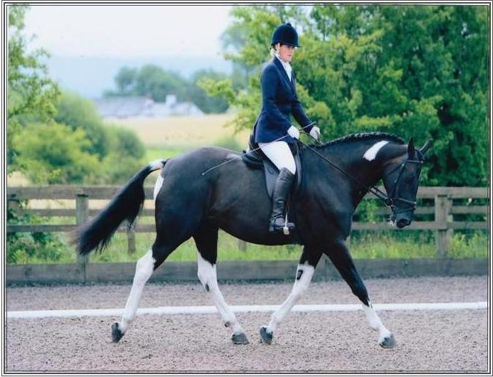 Louisa on horse